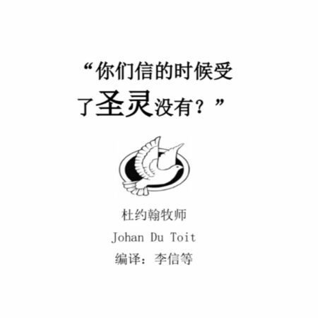 Have you Received the Holy Spirit (Mandarin)